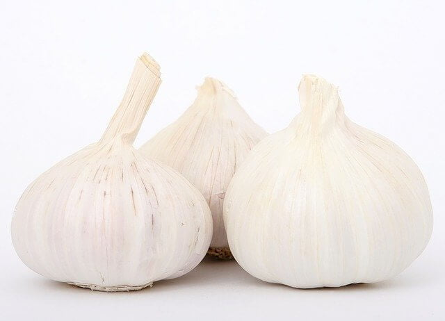 garlic are Healthy Diet For Lungs